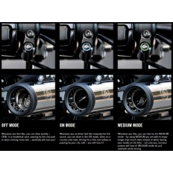 "KESSTECH Sistem evacuari finale tip ""slip-on"", negre, pentru Harley Davidson Touring M8 107"", 2017-2020"